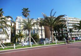 Immagine 400 nuove palme sulla Promenade