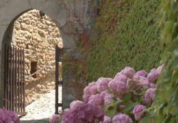 Immagine Cremolino: il castello che guarda dall'alto tutto il monferrato acquese