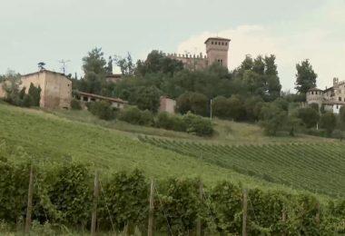 Immagine Gabiano, il magico castello e il labirinto novecentesco