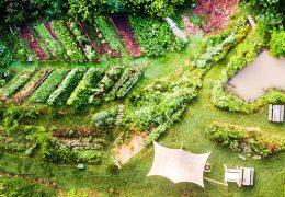 Immagine Un'esperimento di permacultura a poca distanza da Nizza