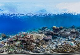 Immagine A Monaco lo yachting diventa favorevole all'ambiente